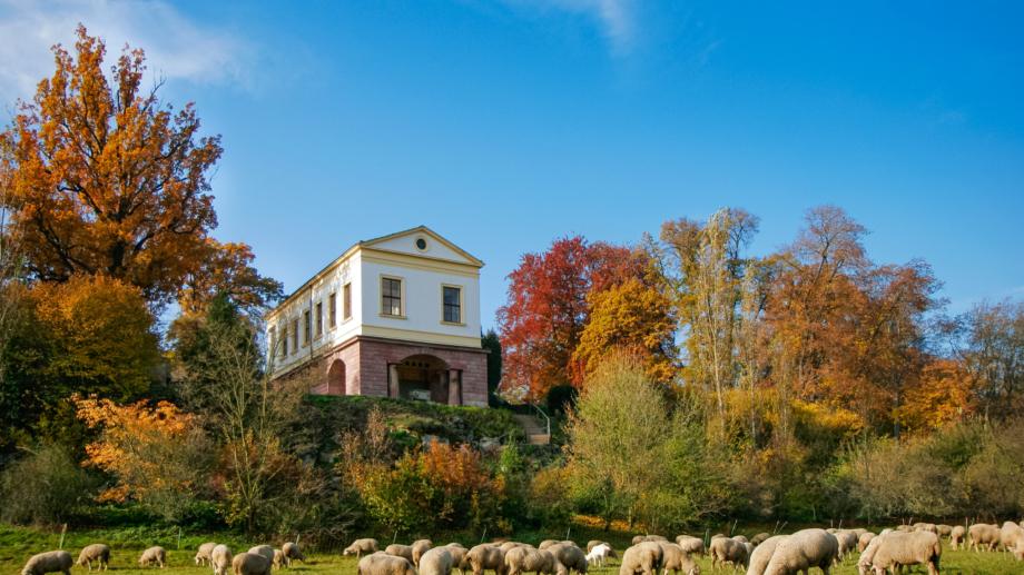 Römisches Haus im Ilmpark mit Schafherde im Vordergrund