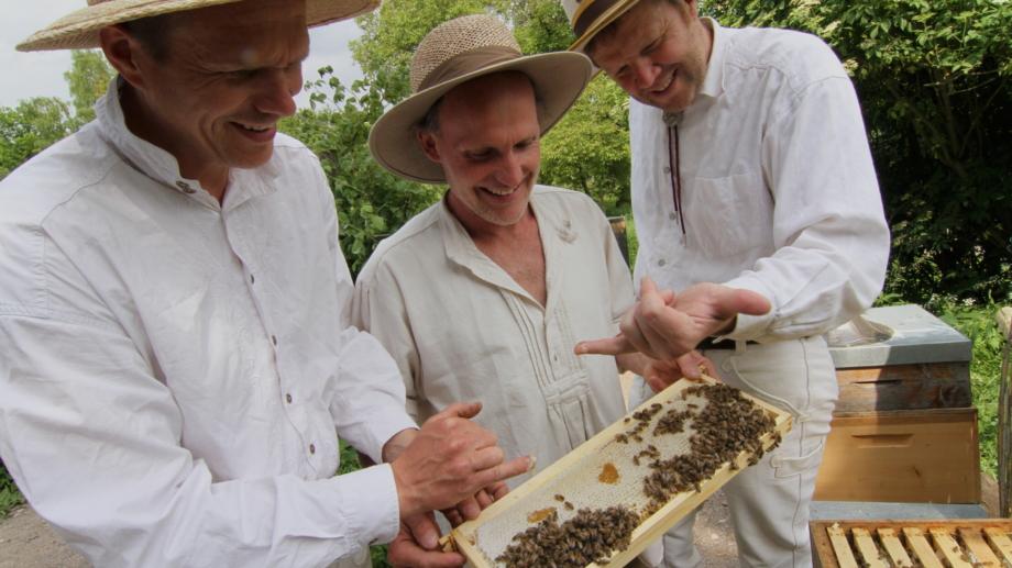 drei Schlossimker überprüfen ihre Bienenkästen